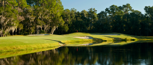 EastLakeWoodlands-Oldsmar-FL-golf-hole14N-960x410_rotatingGalleryFront
