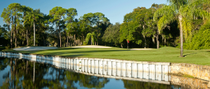 EastLakeWoodlands-Oldsmar-FL-golf-hole18N-960x410_rotatingGalleryFront